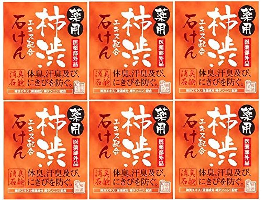 マックス薬用柿渋石けん100g箱×6箱セット