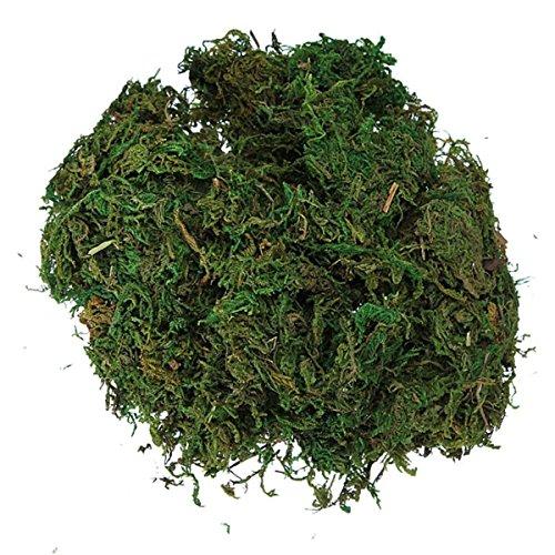 Cikuso Productos de Seda Artificial Verde para Decorar la Guirnalda de Flor de Planta