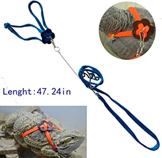 Mokook Adjustable Harness Leash for Parrot African Grey Cockatoo Macaw Ringneck Parakeet Cockatiel and Reptile Lizard Outdoor Walk, Adjustable and Bite Resistant Design, 3.9FT/1.2M (Blue)