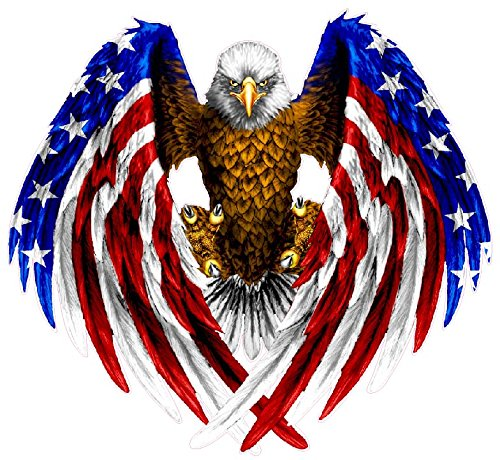 Nostalgia Decals Super Store Bald Eagle American Flag Eagle Wings 10 inch Decal from The United States
