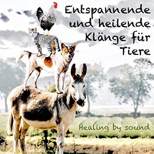 Entspannende und heilende Klänge für Tiere Titelbild
