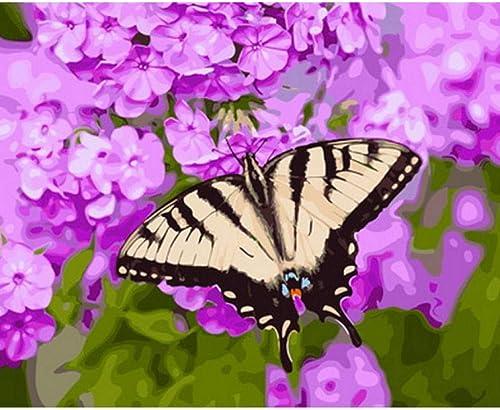 Waofe Tableau Peinture à L'Huile Par Numéros Décoration Murale Bricolage Peinture Sur Toile Pour La Décoration Maison Papillon- No Frame4
