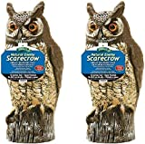 Dalen 016069000301 OW6 Gardeneer by Natural Enemy Scarecrow Horned Owl (Pack of 2)