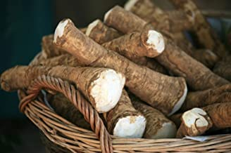 Horseradish Root, 14 ounces (Sold by Weight). Great for Planting, Seasoning or Sauces. A taste delight.