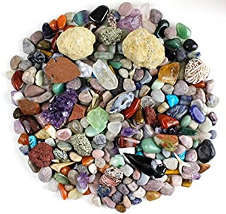 Dancing Bear Rock & Mineral Collection Activity Kit (Over 150 Pcs) , Educational Identification Sheet Plus 2 Easy Break Geodes, Fossilized Shark Teeth and Arrowheads, Brand