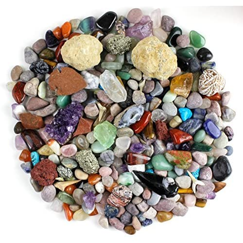 Rocks and Crystals: Amazon com