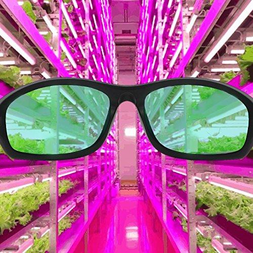 Apollo Horticulture Grow Light Glasses for LED Grow Light Rooms UV400 Grow Room Safety Protective Eyewear for Intense LED Lighting Visual Eye Protection Nebraska