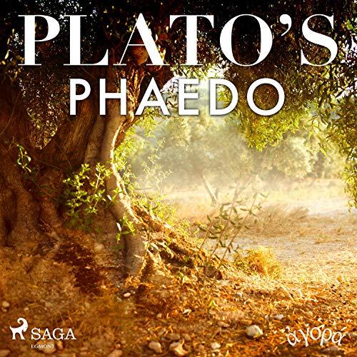 Plato's Phaedo audiobook cover art
