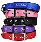 Downtown Pet Supply Deluxe Adjustable Thick Comfort Padded Dog Collar, Large, Pink