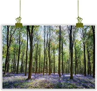 Homrkey Light Luxury American Oil Painting Bluebells in Wepham Woods Landscape Flowers Rural Countryside Woodland Violet Green Brown Canvas Wall Art 24