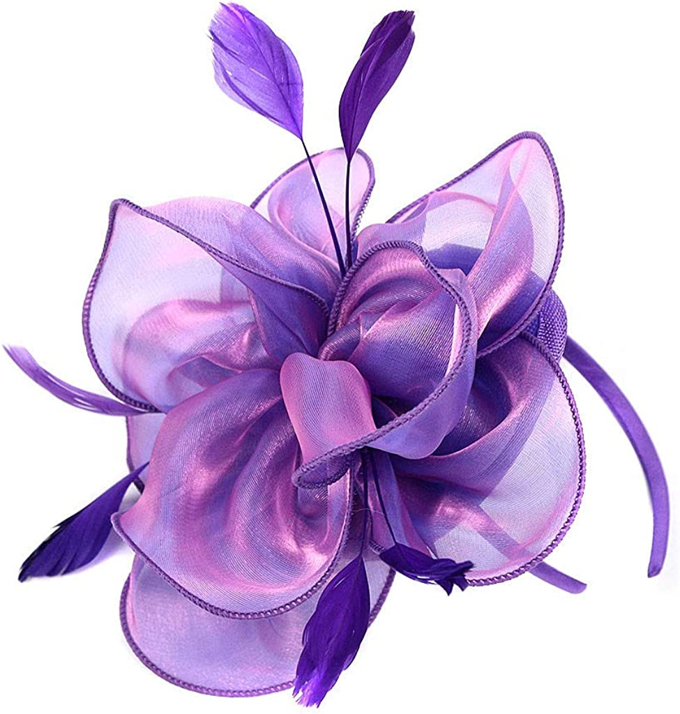 Fascinators Hats for Women Vintage W Derby Year-end gift Mesh Memphis Mall Feather Cocktail