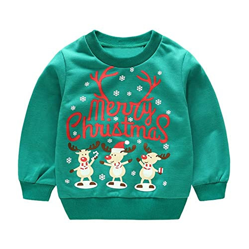 Baby Girl Sweater Baby Boy Sweater Baby Sweatshirt Baby Jumper I Love My Big Sister Baby Sweater SR