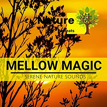 Mellow Magic - Serene Nature Sounds