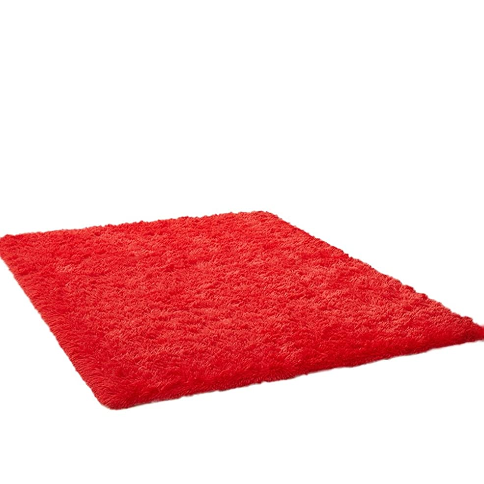 ラグマット カーペット 上敷き ラグ 滑り止め 室内用 絨毯 チェアマット 足ふきマット 厚め 床暖房対応 折り畳み可能 柔らかい 洗える 肌触り 家庭用 ふわふわ おしゃれ 吸水性 多色