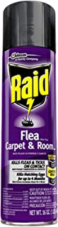 Raid Flea Killer Carpet and Room Spray, 16 OZ (Pack - 1)