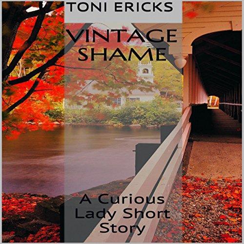 Vintage Shame audiobook cover art