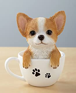 Best teacup chihuahua price Reviews