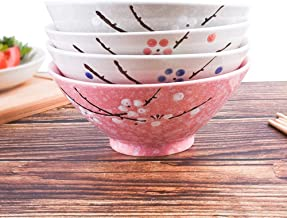 Ceramic Soup/Ramen Bowls Set of 4 Color - Large 7 Inch - Japanese Style Hand-painted Floral Plum Ceramic Bowls For Dessert Snack Cereal Soup Reman and Rice