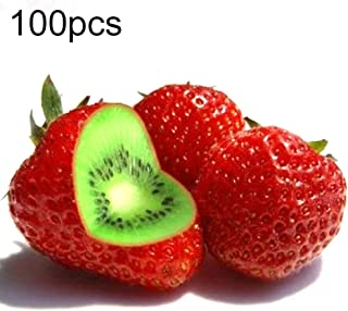 Kukakoo's Most popula Seeds, Indoor and Outdoor, Easy to Feed, Easy to grow100/200/400Pcs Rare Strawberry Kiwi Seeds Sweet Fruit Yard Bonsai Garden Plant - 100pcs Strawberry Kiwi Seeds