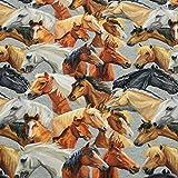 French Terry Stoff Xaver, Pferde, angeraut, grau (50cm x