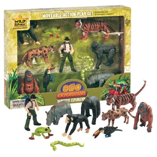 Rainforest Animals Amazon Co Uk