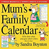 Family Calendars Review and Comparison