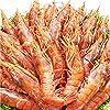 特大20cm 刺身用 天然 アルゼンチンエビ 海老 えび 赤エビ (2kg(20~40尾))