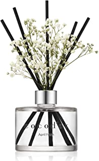 Cocod'or Preserved Real Flower Reed Diffuser/April Breeze / 6.7oz(200ml) / 1..