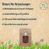 süssundclever.de® Minibananen getrocknet Bio | 1 kg | Premium Qualität: hochwertiges Naturprodukt | plastikfrei abgepackt in ökologisch-nachhaltiger Bio-Verpackung | Bananen - 2
