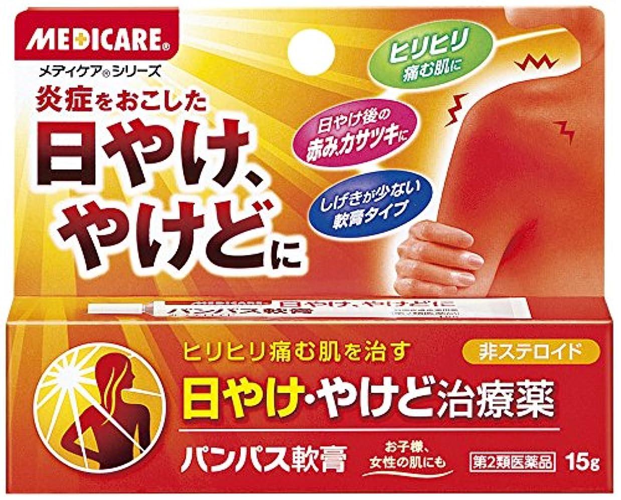 【第2類医薬品】パンパス軟膏 15g