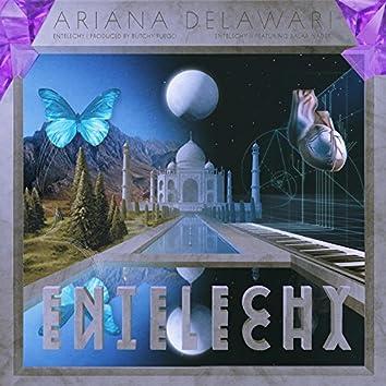Entelechy II (feat. Salar Nader)