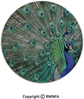 3D Printed Modern No-Shedding Non-Slip Rugs,Peacock Displaying Elongated Majestic Feathers Open Wings Picture 6' Diameter Navy Blue Green Light Brown,Machine Washable Round Bath Mat