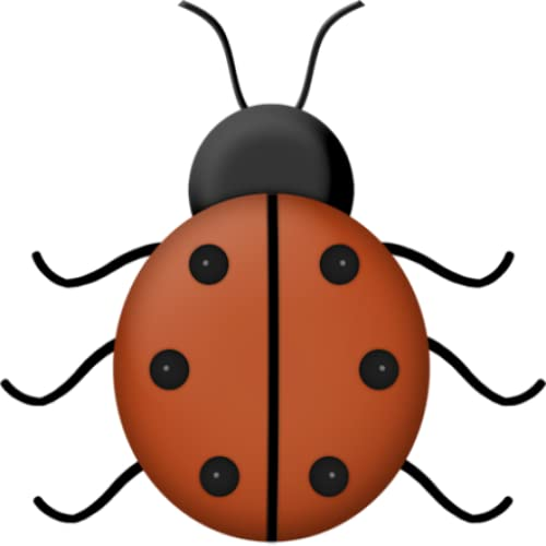 Types of Ladybird