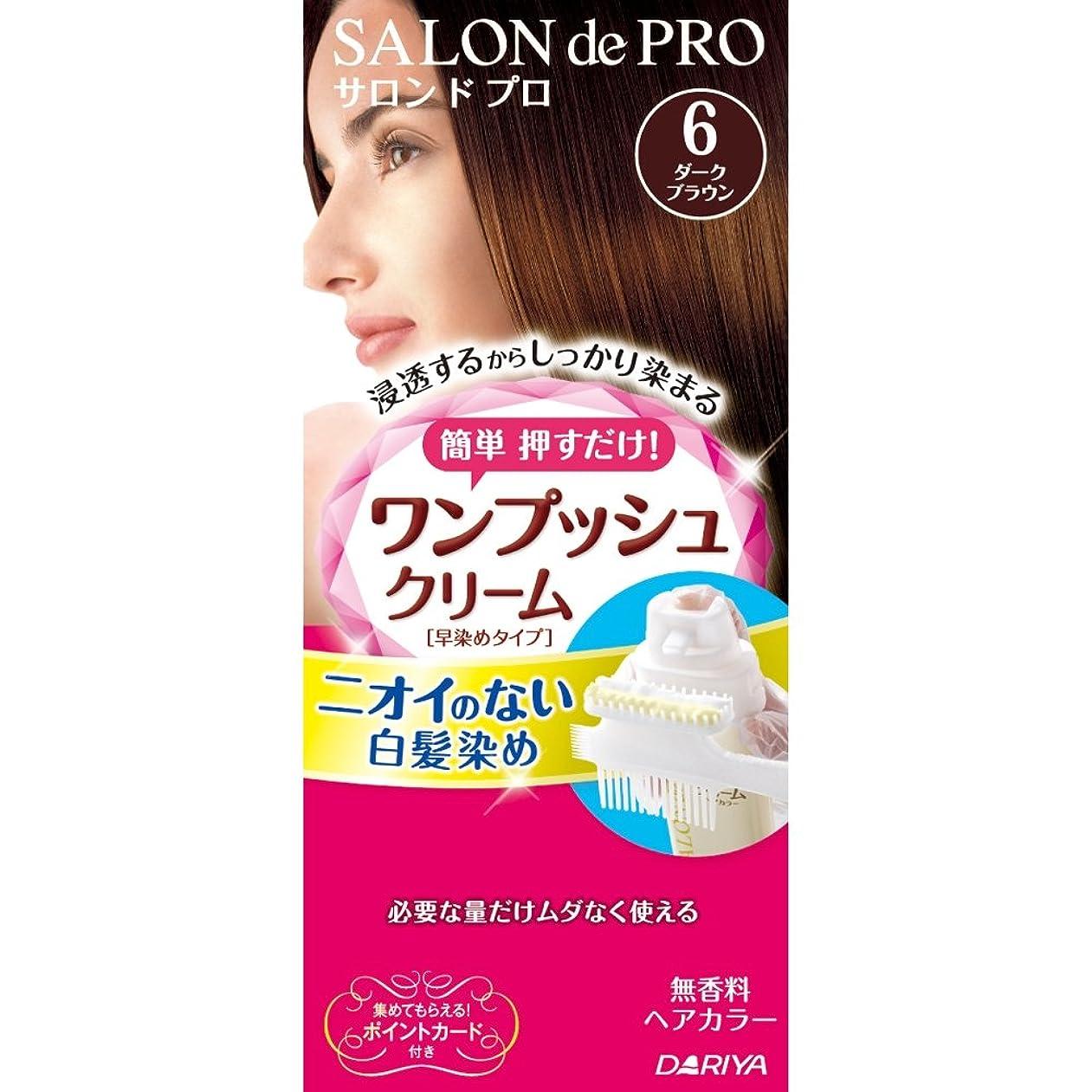 センチメンタル青写真確実サロンドプロ ワンプッシュクリームヘアカラー 6 40g+40g