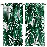BOYOUTH Monstera and Palm Leaves - Cortinas opacas con impresión digital para oscurecer la habitación, cortinas y cortinas con ojales para sala de estar, dormitorio, 2 paneles, 53 x 63 pulgadas