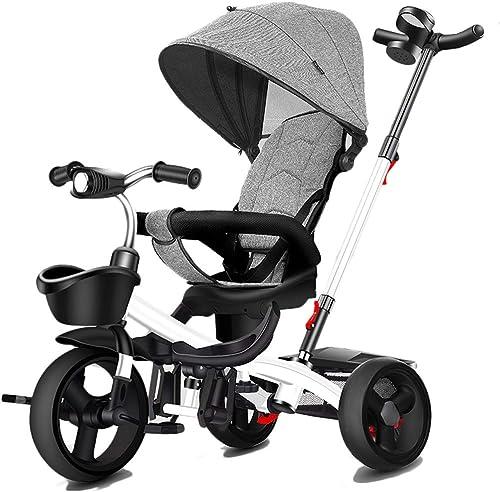 Moolo Poussette Tricycle pour bébé avec poignée, Petite Bouteille avec Cadre de Toit en métal de pour Enfants de 8 Mois à 6 Ans