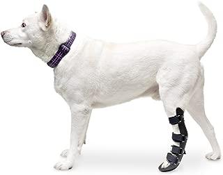 Walkin' Pet Splint for Dog, Canine Rear Leg
