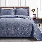 Love's cabin Steppdecken für Queen-Size-Bett, blaue Tagesdecke, weiche Sommerdecke, leichte Mikrofasertagesdecke, moderner Stil, Münzmuster, alle Jahreszeiten, 3-teilig (1 Steppdecke, 2 Kissenbezüge)