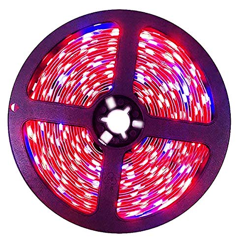 Tesfish LED Pflanzen Wachsen Streifen Licht DC 12V IP20 Vollspektrum SMD 5050 rot blau 8: 1 Seil Licht für Aquarium Gewächshäuser Pflanze