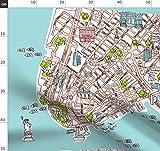 New York, New York City, Freiheitsstatue, Landkarte, Stadt,