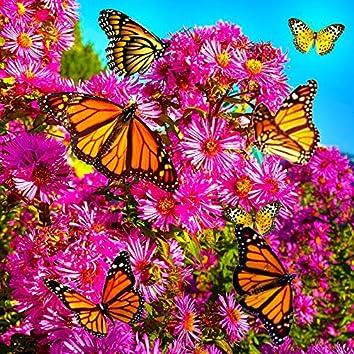 Jardín de las mariposas