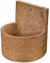 Vaso Parede Fibra de Coco Pequeno