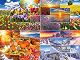 """Quattro stagioni"": set di 100 cartoline raffiguranti paesaggi naturali, (20 motivi, 5..."