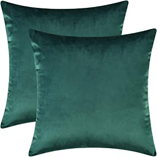 Artcest Set of 2, Cozy Solid Velvet Throw Pillow Case, Decorative Couch Cushion Cover, Soft Sofa Euro Sham with Zipper Hidden, 20