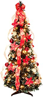 Best poinsettia christmas tree Reviews