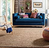 Safavieh Natural Fiber Collection NF447A Handmade Chunky Textured Premium Jute 0.75-inch Thick Area Rug, 9' x 12', Natural