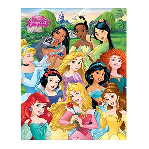 Pyramid International Disney Princess Mini-Poster, Kunststoff/Glas, mehrfarbig, 45 x 76 x 1,3 cm