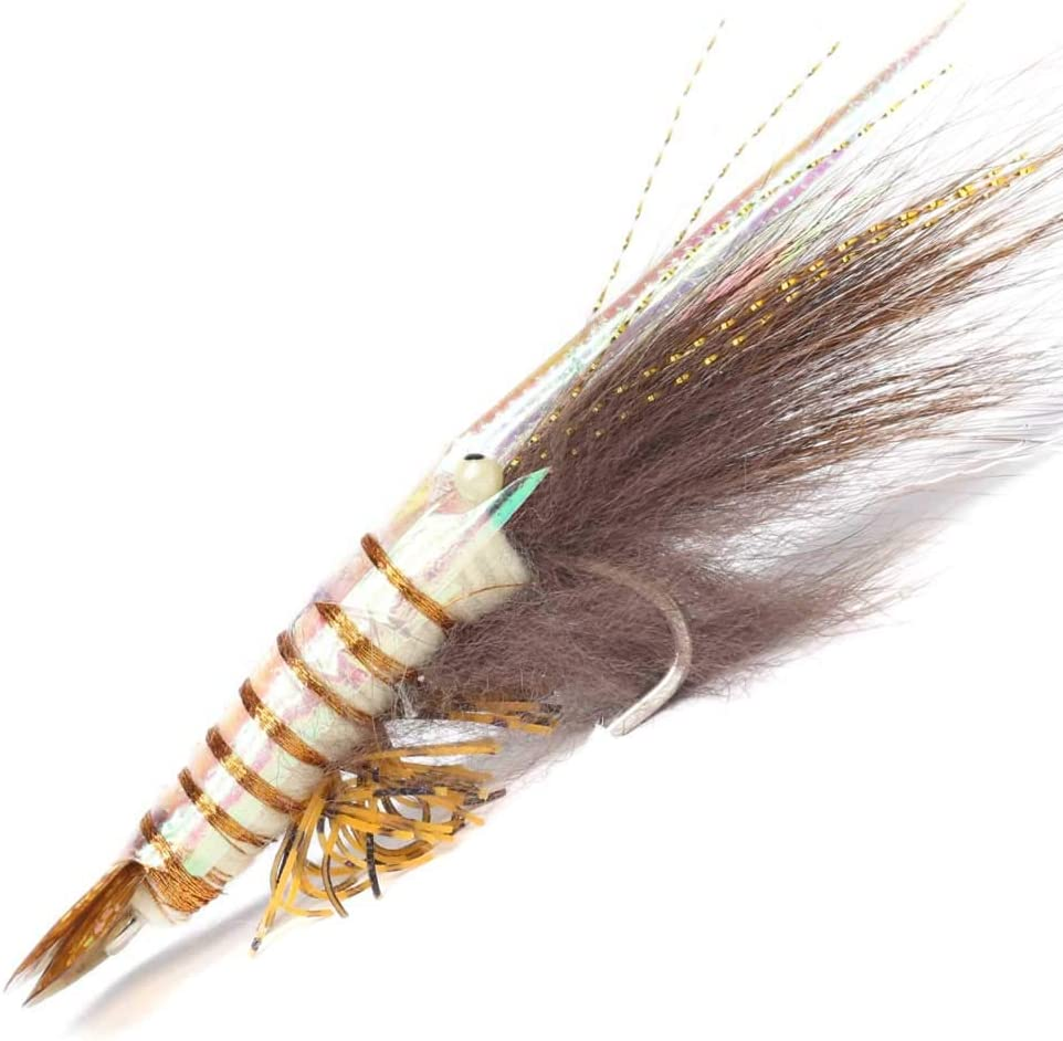 YZD Realistic Shrimp Fly Wet Large Size : Sports & Outdoors