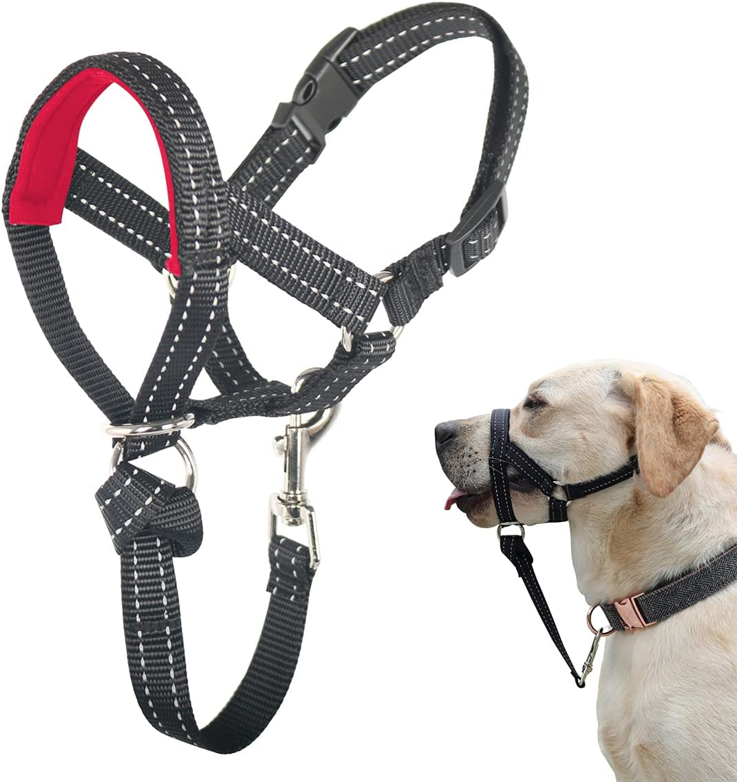 Dog Head Collar Max 68% OFF Weekly update No Pull Halter Padding Soft with Durable
