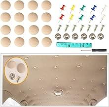Car Proof Repair Rivets Headliner Repair Button,60 pcs Auto Roof Snap Rivets Retainer Design for Interior Ceiling Cloth Fixing Screw Cap Roof Repair Buckle for All Cars